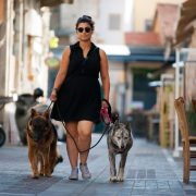 This is Diego and Mia with their owner who struggles to have them walk nicely close to her.