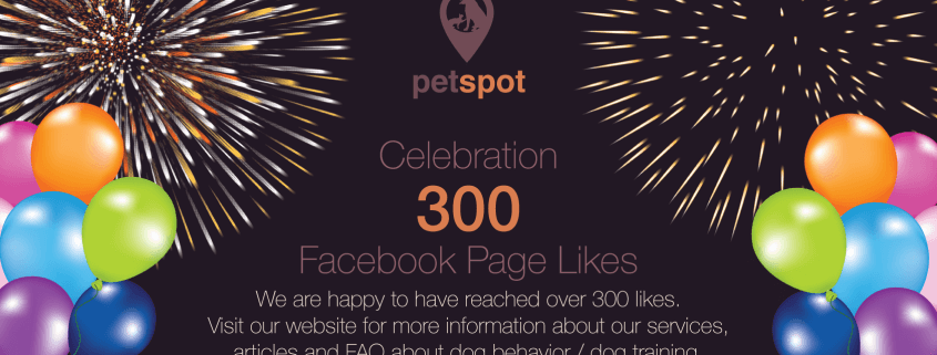 Facebook Celebration 300 Page likes